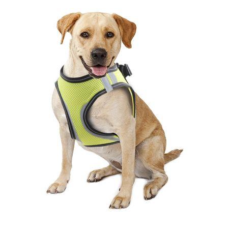 Peitoral de Segurança para Cães Pawise