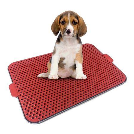 Sanitário Higiênico Pet Xixi Pro Canine