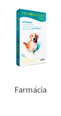 Cachorros - Farmácia