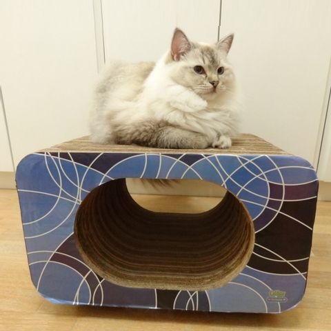 Arranhador-para-Gatos-em-Papelao-Pet-Games-Cat-Box-Oval-Azul-7898947774329-pet-luni