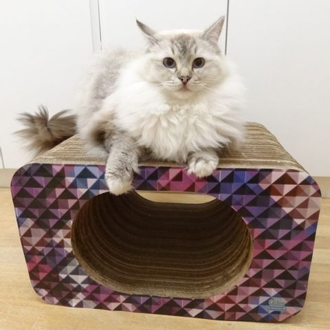 Arranhador-para-Gatos-em-Papelao-Pet-Games-Cat-Box-Oval-Rosa-7898947774312-pet-luni