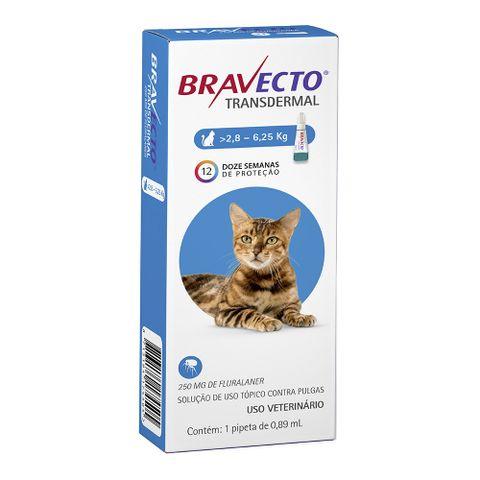 bravecto-transdermal-gatos-2-8-a-6-258713184174505-pet-luni